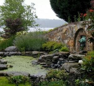 design-pond