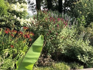 Colorful-Plantings-1